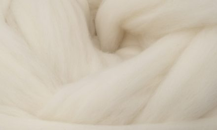 Wool Best Choice for the Environment